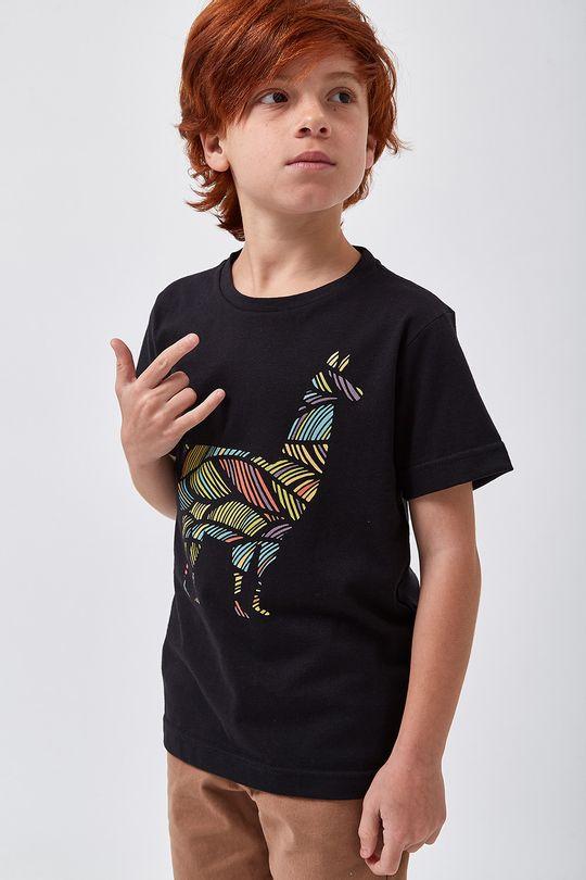 Camiseta-Lhama-Colors-Boys---Preto---Tamanho-4