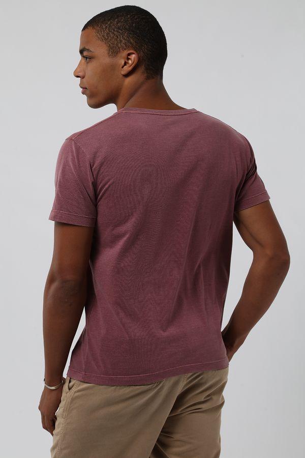 camiseta-estonada-ameixa0539