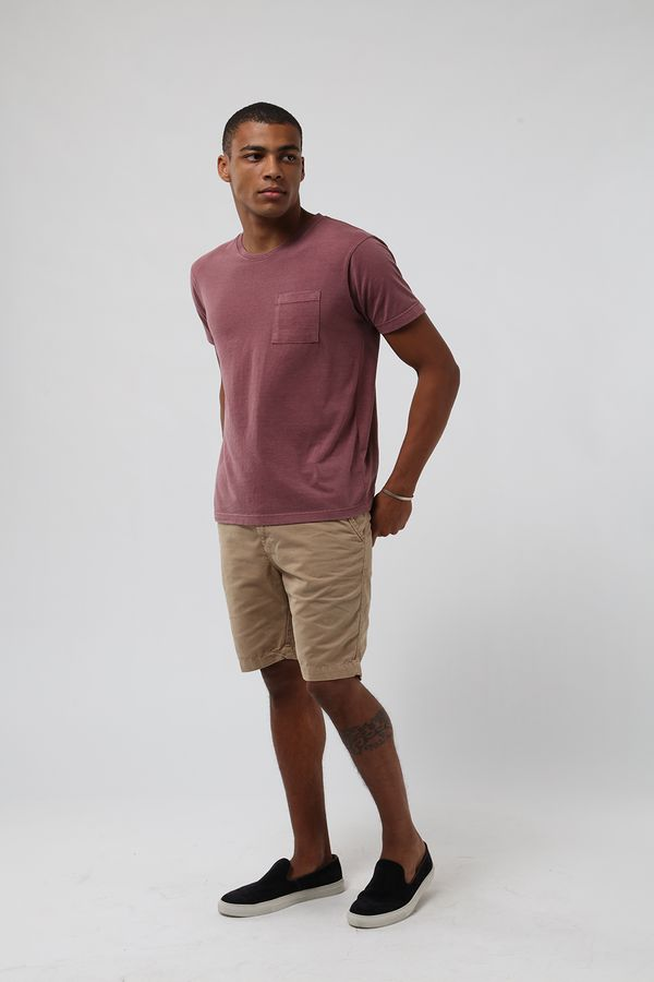 camiseta-estonada-ameixa0535